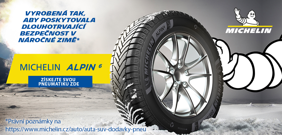 Pneu Michelin Alpin 6